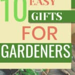 Plants in clay pots with text overlay of 10 Easy Gifts for Gardeners