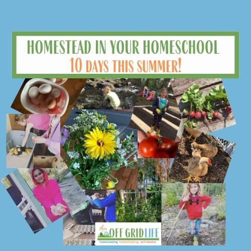 Homestead in Your Homeschool 10 Days This Summer!