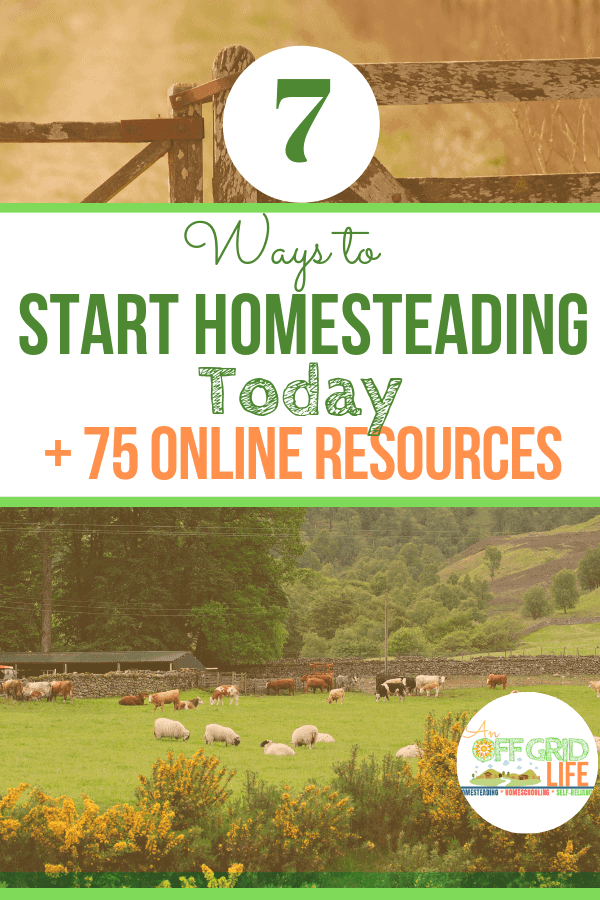 7 ways to start homesteading today text overlay on old farm gate