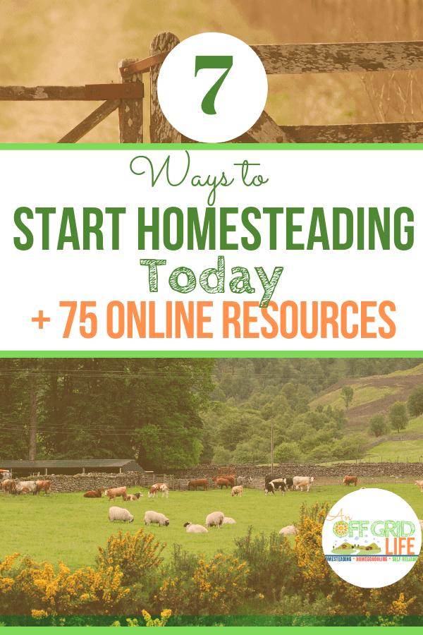 7 Ways to Start Homesteading Today