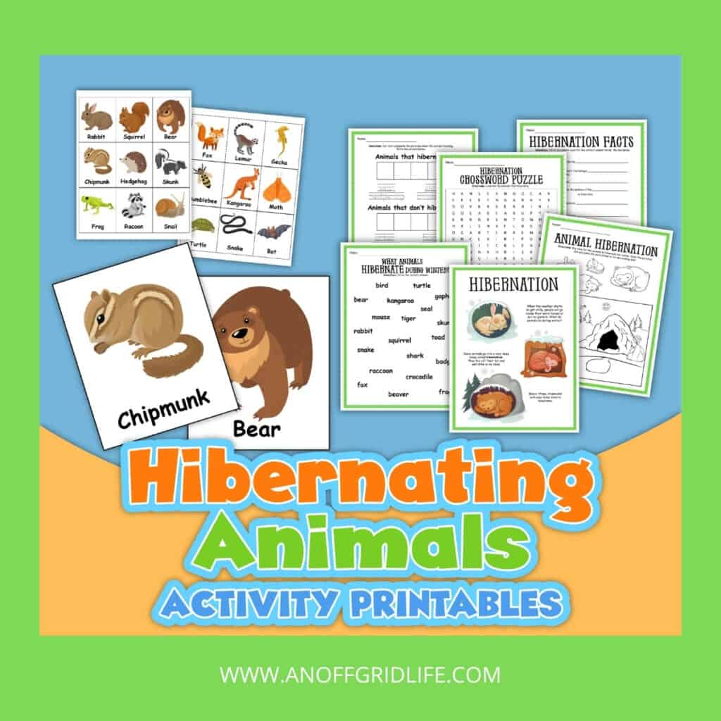 Hibernating Animals Activity & Printables