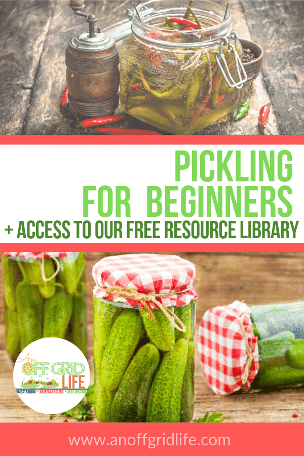Learn about pickling for beginners including supplies needed and how to pickle with apple cider vinegar.