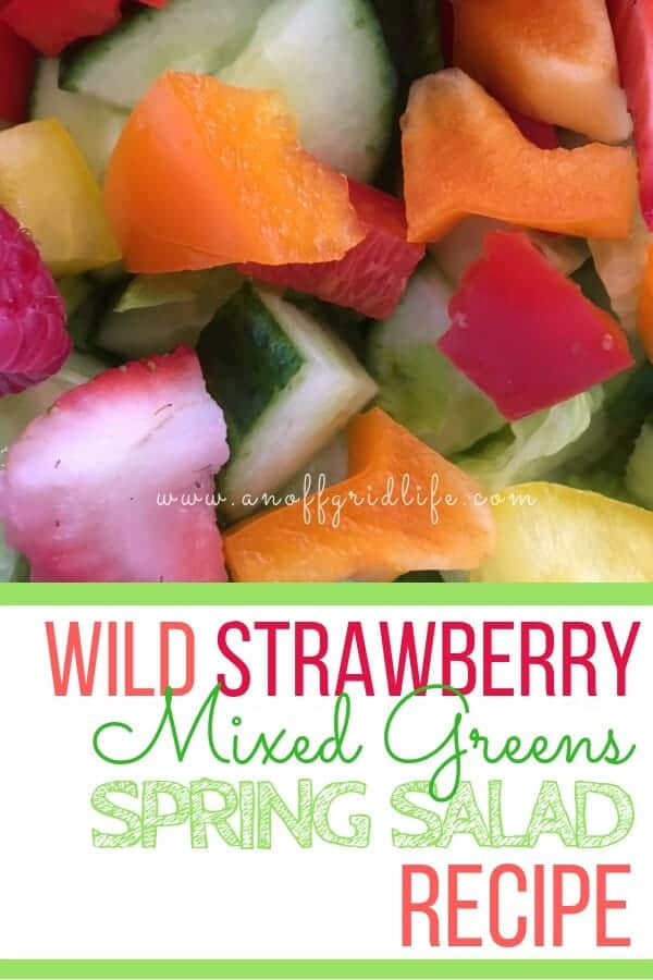 Use wild berries or grab a basket at the market to make this fresh strawberry salad recipe with mixed greens and berries. #strawberries #strawberrysaladrecipe #strawberrysaladrecipes