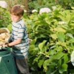child dumping compost into bin