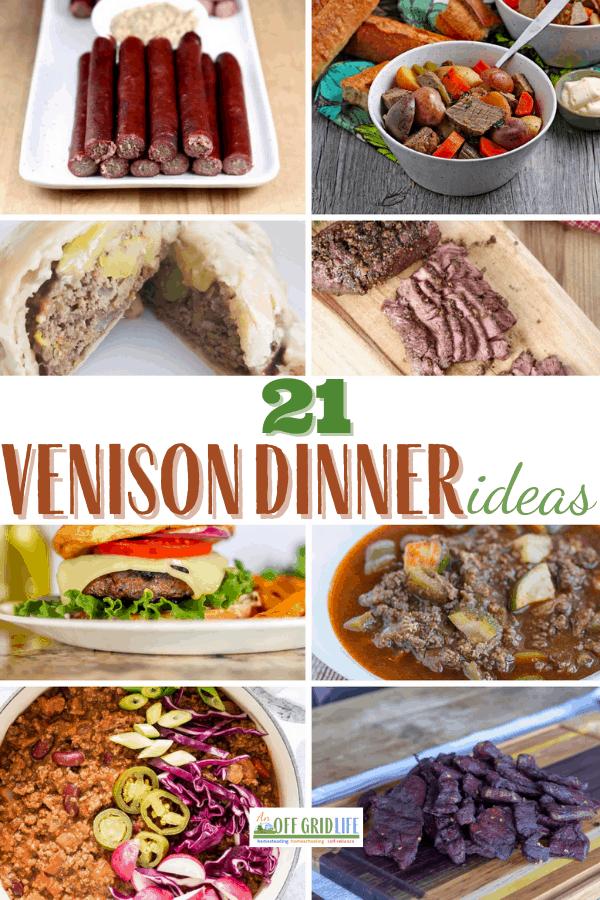 21 Venison Dinner Ideas