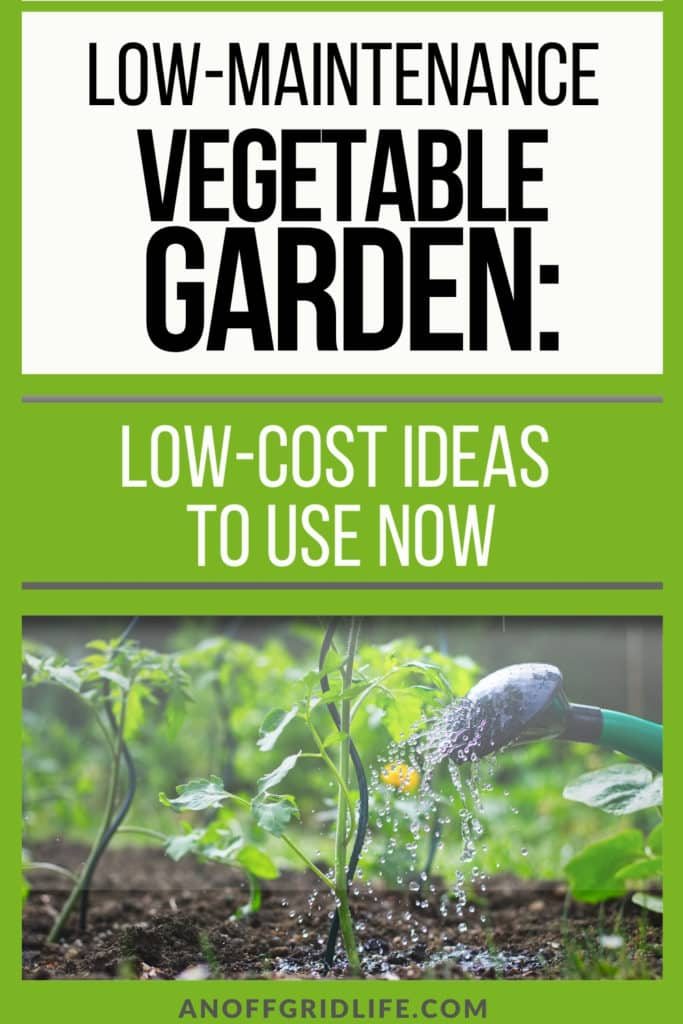 Text overlay Low-Maintenance Vegetable Garden: Low-Cost Ideas to Use Now