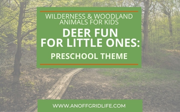 Deer Fun for Little Ones: Preschool Theme