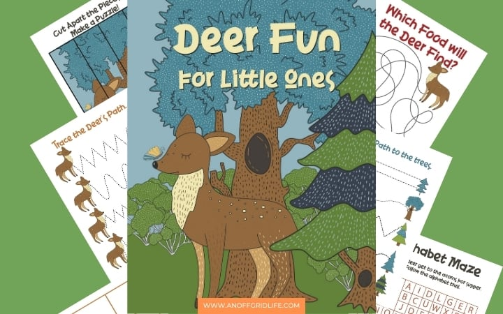Deer Fun for Little Ones text overlay and animated graphic