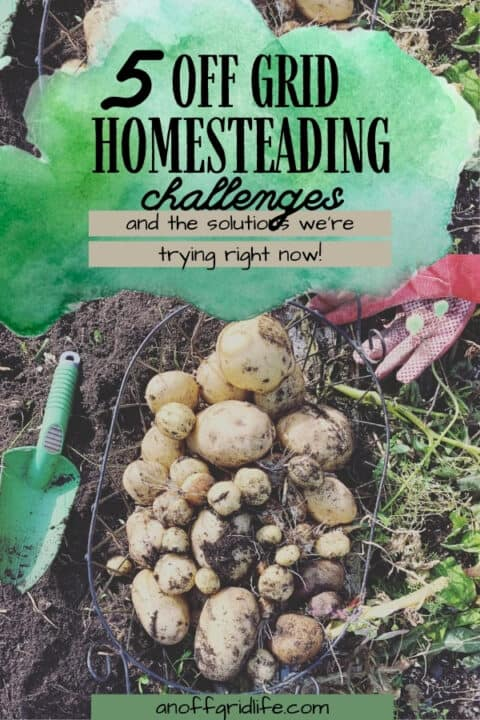 Off Grid Homesteading Challenges & Solutions