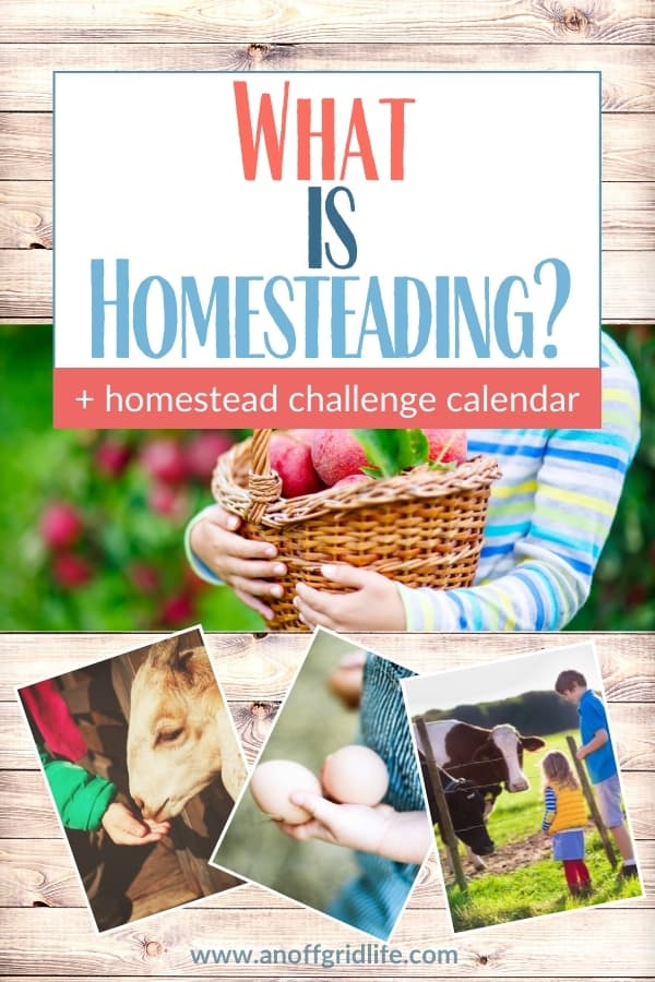 Answer your question of What is Homesteading and get some ideas on how to start.
