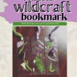 How to Make a Pressed Wildcraft Bookmark